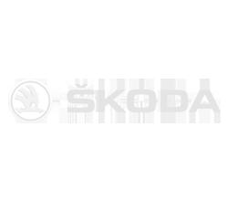 evenement-entreprise-skoda