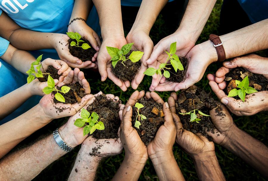 dernières tendance évnementiel developpement durable
