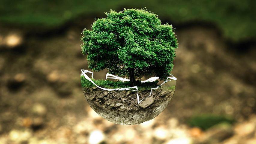 séminaire entreprise ecologie chambery