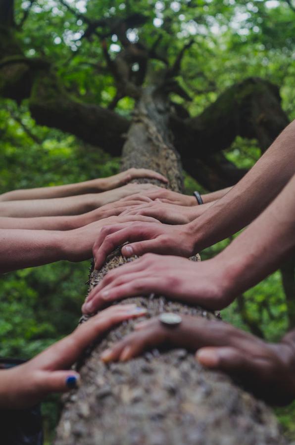 organiser un séminaire écologique à chambéry