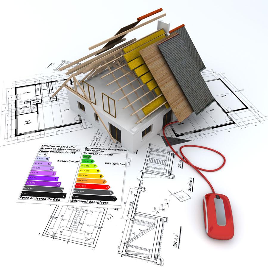 ecologie team building