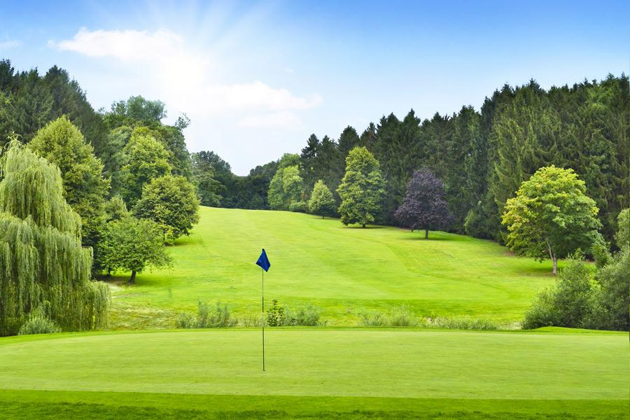 animation golf pour entreprise