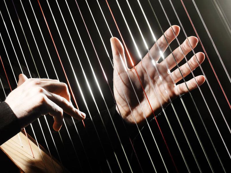 animation musicale harpiste soirée gala inauguration