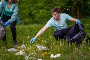 team building ecologique