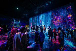 digitalisation et organisation événements