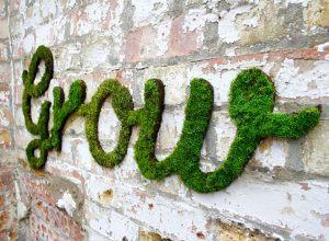 Graffiti vegetal