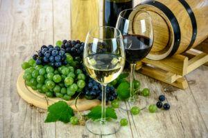degustation-vin-provence
